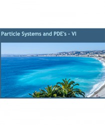particle-systems-and-pde-s-vi