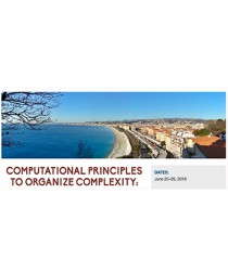 computational-principles-to-organize-complexity-international-summer-school