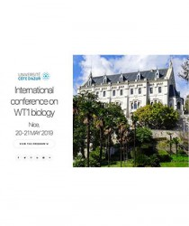 international-conference-on-wt1-biology