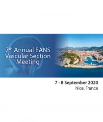 7th-annual-eans-vascular-section-meeting